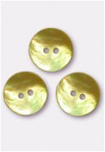 Shell Button 18 mmYellow x100