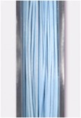Nylon Coated Steel Wire Pale Blue x10m